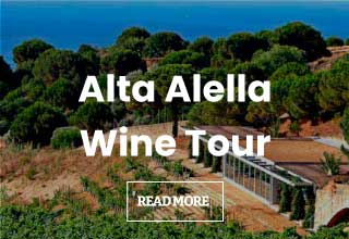 Wine Tour to Alta Alella from Barcelona