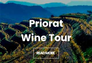 Priorat Wine Tour