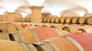 Albet i Noya Winery Tour
