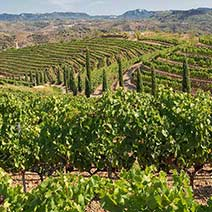 Tour a Priorat