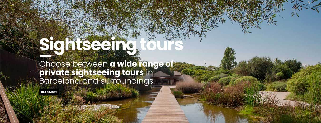 Private sightseeing tours