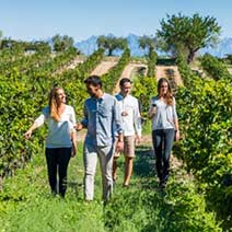 Penedes wine tour