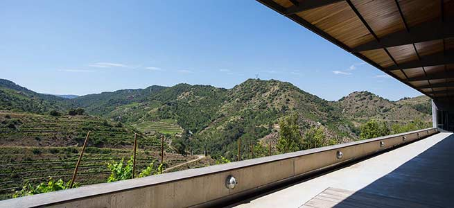 Wine tour to Priorat